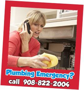 contact Budget Rooter Plumbing Plus